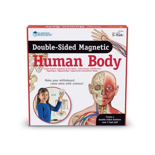Lidské tělo magnetické